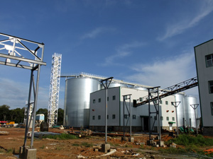 Seed Oil Extraction Plant Over View