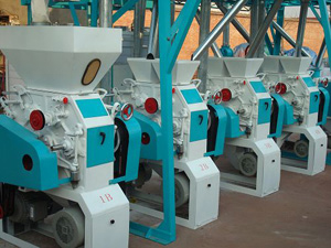 15T-30T 6FTY small scale flour mill plant