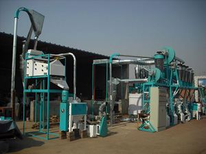 15-30T small complete flour mills