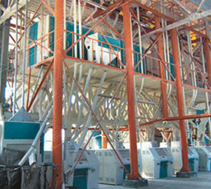 200T flour mill installation
