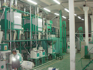 15-30T-small-scale-flour-mill-workshop