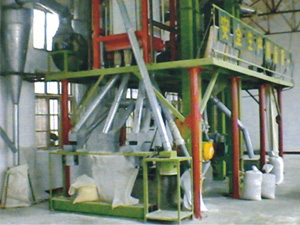 20T corn flour milling machine