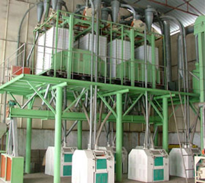 80T large scale flour mill line