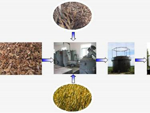 biomass gasification fuel production line
