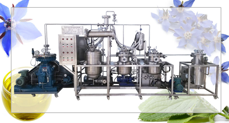 borage seed oil extraction machine