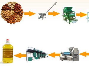 groundnut oil processing
