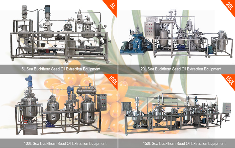 seabuckthorn seed oil extracting machines