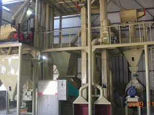 biomass fuel projects